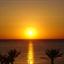 sunrisecc